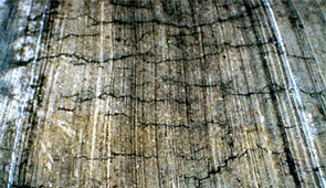 plastic concrete cracks